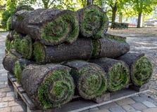Grame o grama nos rolos prontos para ser usado jardinando ou ajardinando Fotos de Stock Royalty Free
