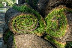 Grame o grama nos rolos prontos para ser usado jardinando ou ajardinando Imagem de Stock Royalty Free