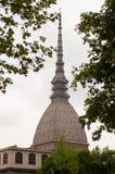 Gramocząsteczka Antonelliana w Turyn, Włochy obrazy stock
