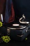 Gramofonowego rejestru winogron zakończenia dźwięk retro Obraz Royalty Free