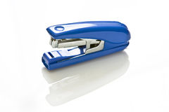 Grampeador azul Imagem de Stock