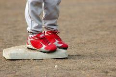 Grampos vermelhos na base Imagem de Stock