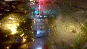 Grampos verticais do timelapse na noite do busride através do centro da cidade com sinais de néon vídeos de arquivo