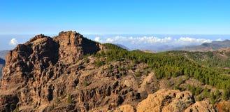 与杉木和蓝天的多山风景从Gran卡纳里亚,加那利群岛山顶  免版税库存照片