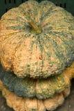 Gran bola de la calabaza Imagenes de archivo