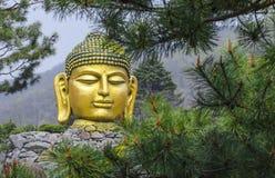 Gran Buda de oro, Corea Fotos de archivo
