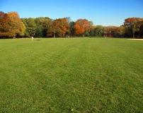 Gran césped, Central Park, Nueva York imagen de archivo