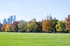 Gran césped situado en el corazón del Central Park durante la caída imagen de archivo