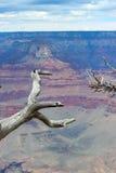 Gran Cañón, AZ Fotos de archivo libres de regalías