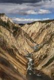 Gran Cañón en el parque nacional de yellowstone Fotos de archivo libres de regalías