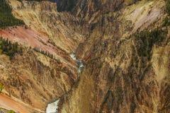 Gran Cañón en el parque nacional de yellowstone Imagen de archivo libre de regalías