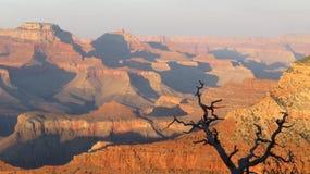 Gran Cañón en la puesta del sol Imagenes de archivo