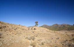 Gran Canaria, ноябрь Стоковые Изображения RF