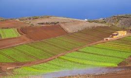 Gran Canaria, сентябрь стоковая фотография rf