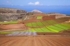 Gran Canaria, сентябрь стоковое фото rf