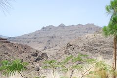 Gran Canaria royalty-vrije stock afbeeldingen