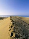 Gran Canaria photo libre de droits