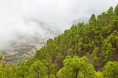 Gran Canaria, Aardpark Tamadaba stock afbeeldingen