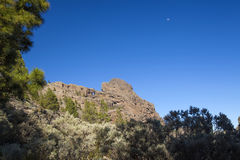 Gran Canaria, as áreas as mais altas da ilha, Las Cumbres Fotografia de Stock