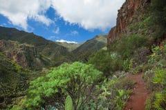 Gran Canaria, Barranco de los Cernicalos Royalty Free Stock Photo