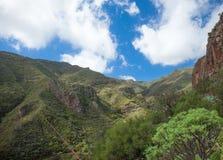 Gran Canaria, Barranco de los Cernicalos Royalty Free Stock Image