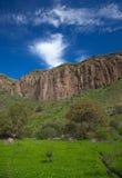 Gran Canaria, Caldera de Bandama efter vinter regnar royaltyfri fotografi