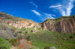 Gran Canaria, Caldera de Bandama efter vinter regnar royaltyfria bilder