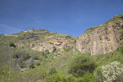 Gran Canaria, Caldera de Bandama och Pico de Bandama royaltyfri fotografi