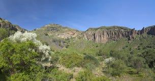 Gran Canaria, Caldera de Bandama och Pico de Bandama fotografering för bildbyråer
