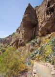 Gran Canaria, Caldera de Bandama Stock Photography