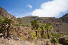 Gran Canaria, Caldera de Bandama Royalty Free Stock Photo