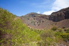 Gran Canaria, Caldera de Bandama Royalty Free Stock Photos