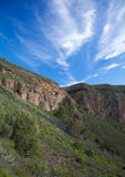 Gran Canaria, Caldera de Bandama after winter rains Stock Photo