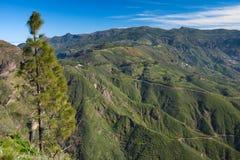 Gran Canaria, Caldera DE Tejeda royalty-vrije stock foto