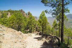 Gran Canaria, Caldera de Tejeda fotografia de stock royalty free
