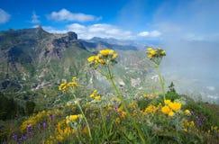 Gran Canaria, Caldera de Tejeda Royalty Free Stock Image