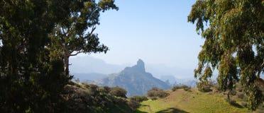 Gran Canaria, Caldera de Tejeda i Januari royaltyfria foton