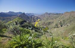 Gran Canaria, Caldera de Tejeda, Januari arkivbilder