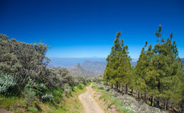 Gran Canaria, Caldera de Tejeda Royalty Free Stock Photography