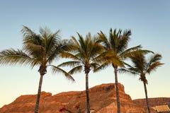 Gran Canaria, Canary islands,Spain stock photo
