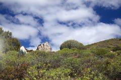 Gran Canaria, casa rovinata Fotografie Stock Libere da Diritti