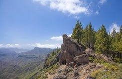 Gran Canaria, Cuevas de Caballero em Risco Chapi imagens de stock royalty free