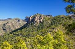 Gran Canaria, December royalty-vrije stock foto's