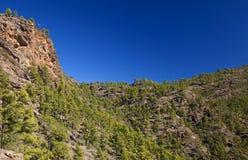 Gran Canaria, December royalty-vrije stock afbeeldingen