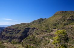 Gran Canaria, December royalty-vrije stock afbeelding