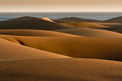 Gran Canaria Dunes in Maspalomas. In the sun Royalty Free Stock Image