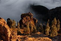 GRAN CANARIA, ESPAÑA - 6 DE NOVIEMBRE DE 2018: Paisaje magnífico de rocas y de árboles en las montañas Roque Nublo imagenes de archivo