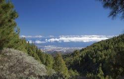 Gran Canaria, hiking path Cruz de Tejeda - Teror Stock Photos