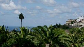 Gran Canaria Island stock video