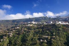 Gran Canaria, January. View across valley Barranco de Las Lagunetas, low afternoon light royalty free stock image